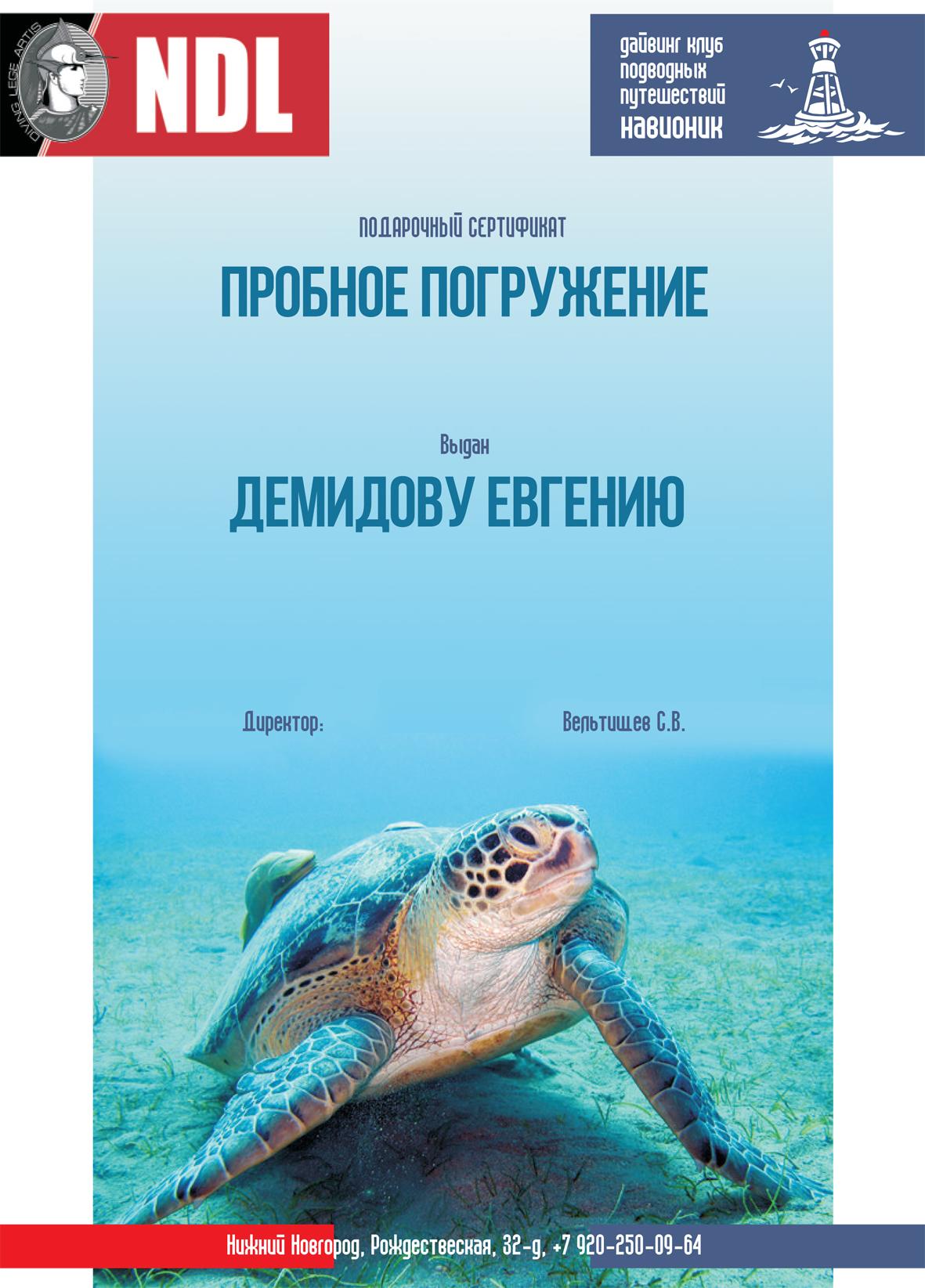 сертиф-подарок-демидов
