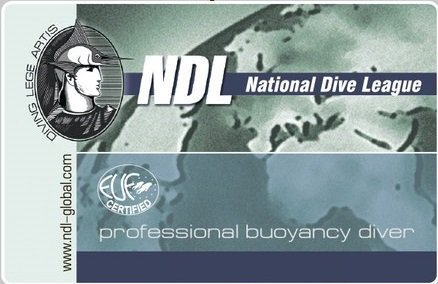 PROFESSIONAL BUOYANCY DIVER